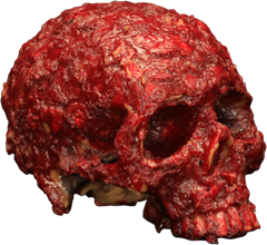 Maskerad Blood Scab Resin Skull