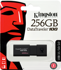 Kingston DataTraveler 256GB USB 3.0